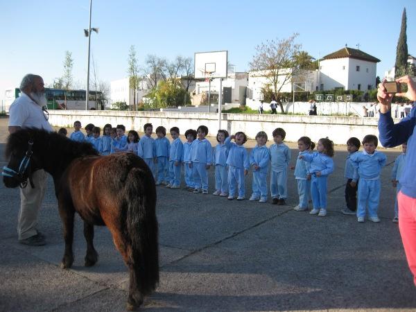 Conocemos a un pony
