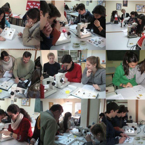 15 01 28 Laboratorio Biologia